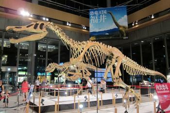 恐竜0039
