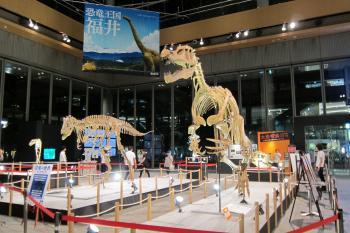 恐竜0038