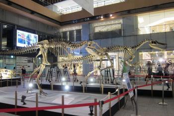恐竜0053