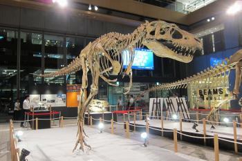 恐竜0044