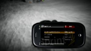 20110124164403-0662.jpg