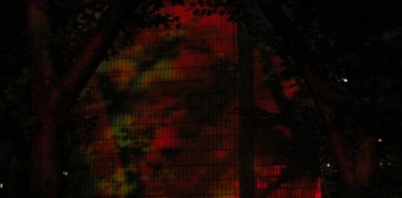 redzone564.jpg