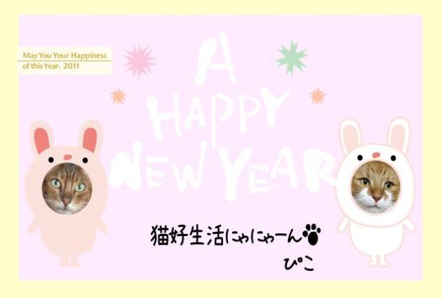 nenga_20101229125426.jpg