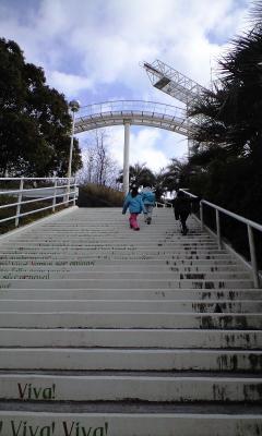 ほぼ階段orハイキング状態。。。
