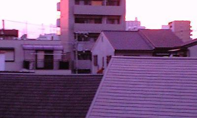 あ、屋根の上に猫が☆見える??