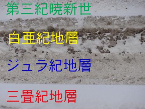 20130110-1.jpg