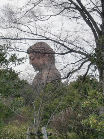 桜2011i