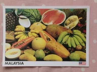 マレーシアY20110901