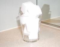 洗面所排水口掃除5