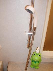 ホース洗い1