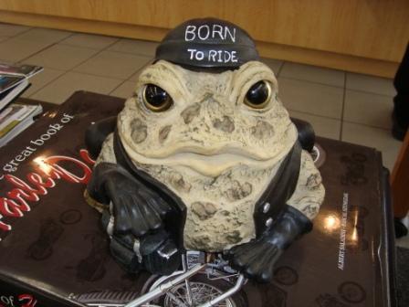 2-28 demo ride frog