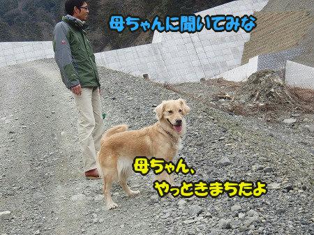 CIMG3362.jpg