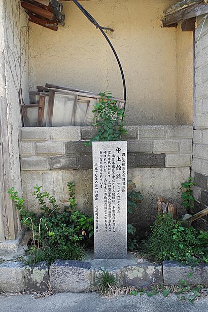 南草木(110923)-03