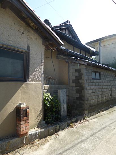 南草木(110923)-02