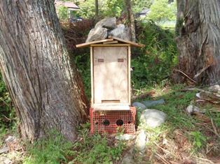 理想の巣箱のタイプを目指して