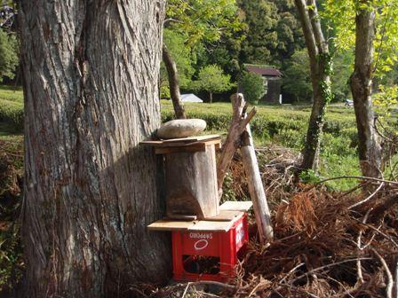 自然木の待ち箱
