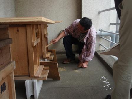 巣箱の掃除P6140030