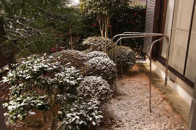 0116-snow-01.jpg