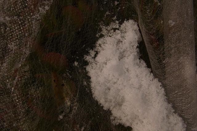 0116-snow-013.jpg