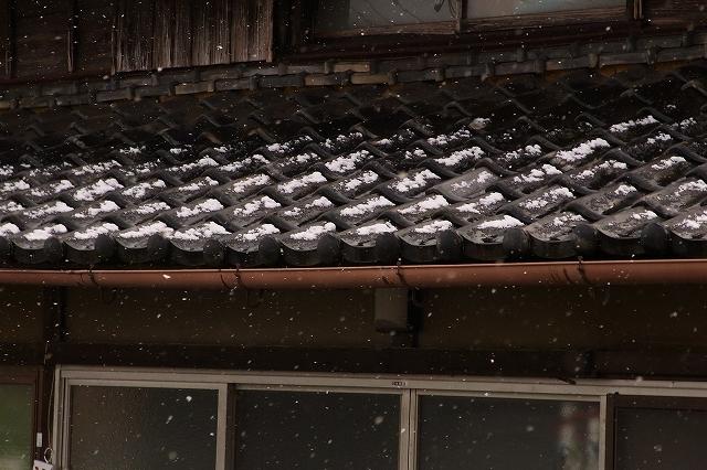 0116-snow-017.jpg