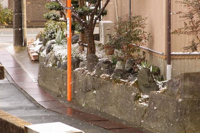 0116-snow-018.jpg