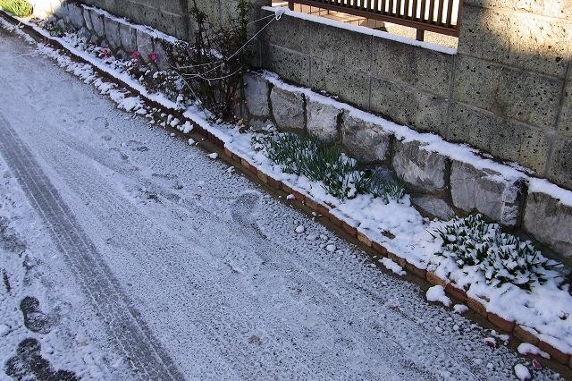 0117-snow-02.jpg