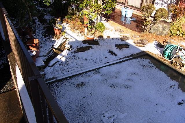 0117-snow-08.jpg
