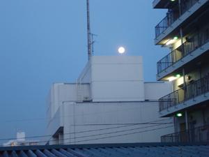 仲秋の名月