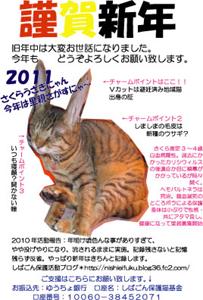 2011年賀