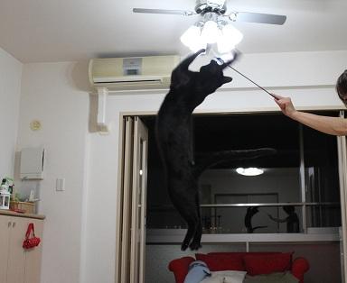 跳ぶ (2)