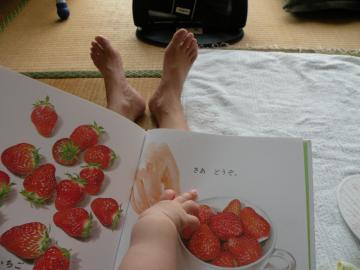 イチゴ110709