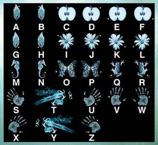 fringe-decoder-320[1]