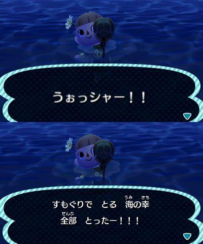 海の幸コンプリート!