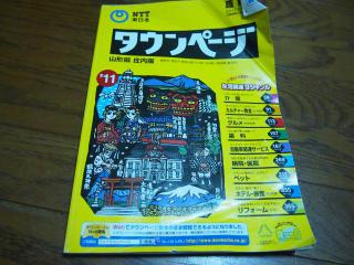 P1255062_convert_20130125232053.jpg