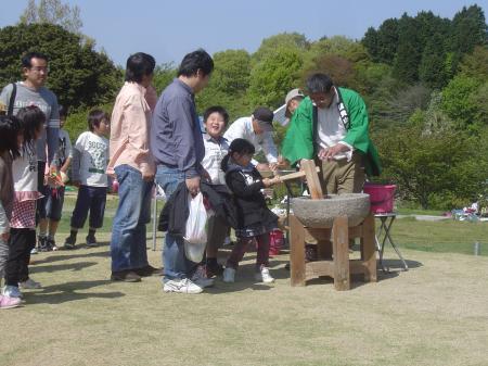 もちつき大会2010.5.2(2)