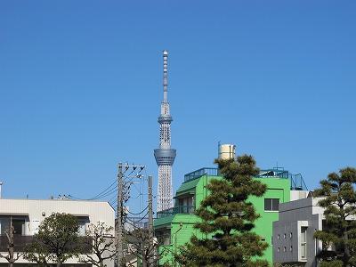 IMG_4163-s.jpg
