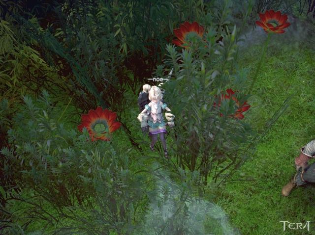 TERA_ScreenShot_20130305_002154.jpg