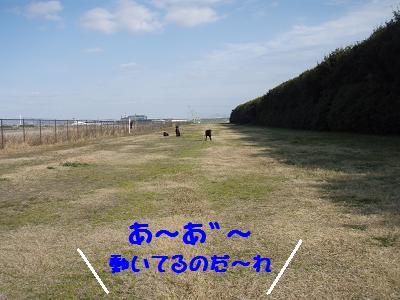 P3030197-4.jpg