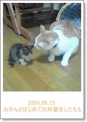20040915.jpg