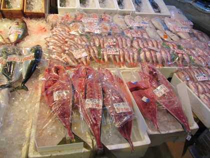しまねお魚センター 6