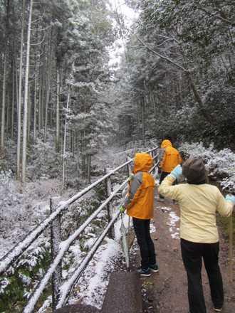 雪の熊野磨崖仏 1
