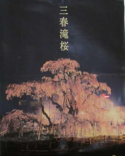 滝桜ポスター