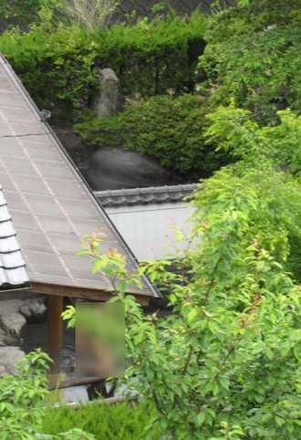 鶴川温泉 5