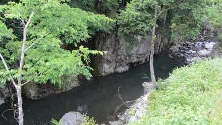 魔林峡 4