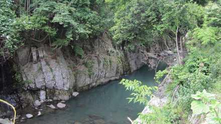 魔林峡 6