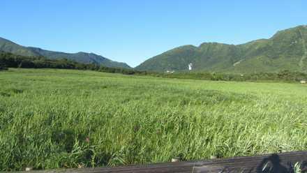 タデ原湿原 2