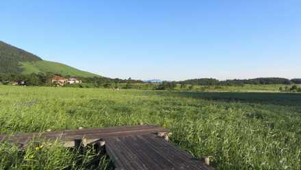 タデ原湿原 3