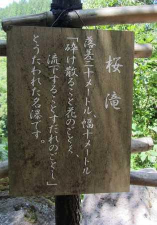 天水露天 5 桜滝説明