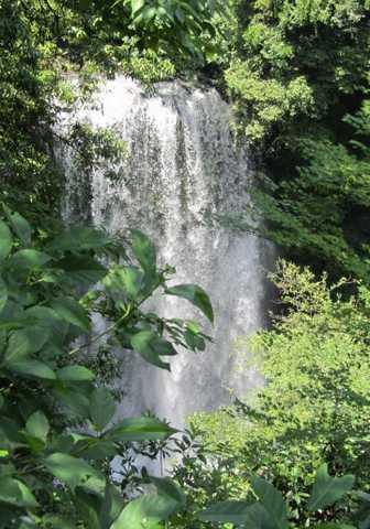 天水露天 8 桜滝