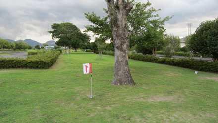 グランドゴルフ 2